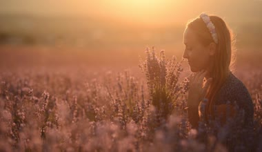 Happy and relaxed girl sitting in the middle of a field of blossoming lavender with a bouquet at sunset — Stock Video