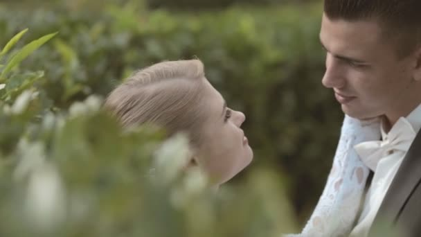 Cute bride stroking the face of groom standing among the leaves — Vidéo