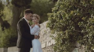 The newlyweds standing near a stone wall in the park — Stock Video