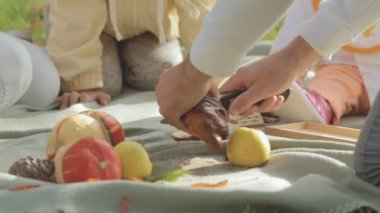 Close-up of cutting bread with poppy on a picnic — Stock Video