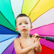 Portrait of the little boy with rainbow colors umbrella — Stock Photo #79020528
