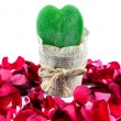 Green Heart, Red Roses — Foto Stock #63719731