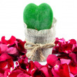 Green Heart, Red Roses — Stok fotoğraf #63719731