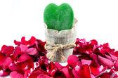 Green Heart, Red Roses — ストック写真