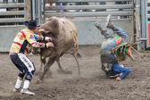 Rodeo Clown — Stock Photo