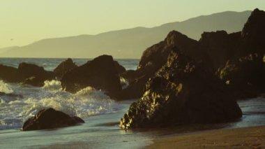 Golden Coast — Stock Video
