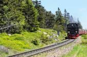 Railroad to Brocken Mountain — Stock Photo