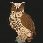 Long-eared owl night — Stock Vector