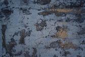 Beton mavi duvar — Stok fotoğraf