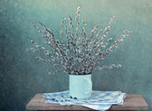 Still life with a willow bouquet — Stock Photo