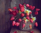 红色郁金香花束 — 图库照片