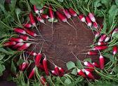 Frais radis de jardin avec un dessus de légume. — Photo