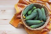 Still life with cucumbers. — Stock Photo