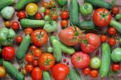 Fresh cucumbers, cowberry, red and green tomatoes on a table. — Stock Photo