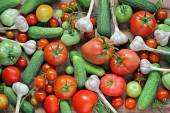 Fresh cucumbers, garlic, red and green tomatoes on a table. — Stock Photo