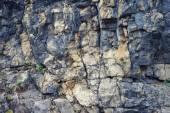Bir taş dokusuna — Stok fotoğraf