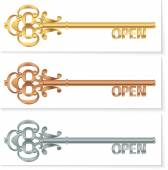 Set-of-vintage-golden-key-to-open-the-bronze-silver — Stock Vector