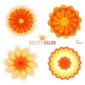 Flowers-set-logo-icon-floral-beauty-salon — Stock Vector