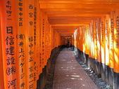 Cancelli arancioni — Foto Stock