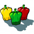 Capsicum Tri Color — Stock Vector #62113875
