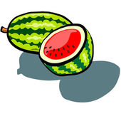 Watermelon Whole and Half — Stock Vector