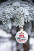 Ukraine bauble on christmas tree. The word that is written on th — Stock Photo