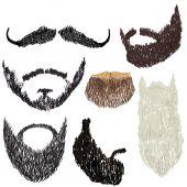 Beard with mustache — Stockvektor