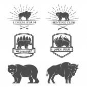 Bison and bear. Posters, labels, emblem. — Stock Vector