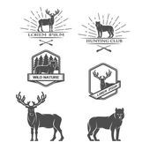Deer and wolf. Posters, labels, emblem. — Stock Vector
