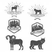 Sheep and lynx. Posters, labels, emblem. — Stock Vector