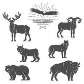 Grandes animales en América del norte. — Vector de stock