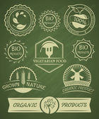Set of organic badges and labels. — Stock Vector