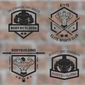 Bodybuilding, posing with athletes. — Vecteur