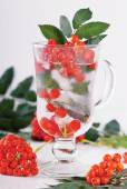 Glass of water with rowanberries — Stock Photo