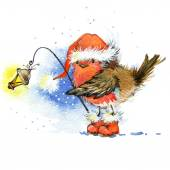 Winter bird robin and Christmas decorations. parts for cards or greetings. watercolor — Stock Photo