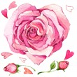 Valentine  Day. sweet heart and rose. illustration, watercolor — Stock Photo #61035143