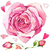 Valentine  Day. sweet heart and rose. illustration, watercolor — Stock Photo