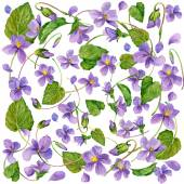 Spring flowers background. Forest violet and young green grass. — Stock Photo
