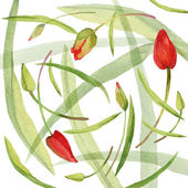 Flower wreath and young green grass. Spring flowers background. watercolor art — Stock Photo