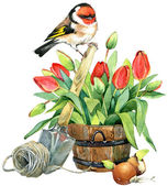 Spring flowers and bird. watercolor — Stock Photo