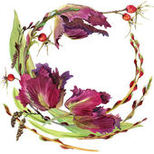 Flower wreath of Royal Tulip, hips and willow branches with green grass. watercolor art — Stockfoto