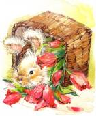 Funny bunny and flower background. watercolor — Stock Photo