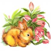 Funny bunny. background for congratulations — Stock Photo