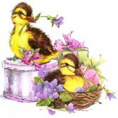 Cute duck. watercolor — Stock Photo