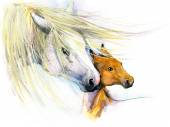 Watercolor horse mom and baby — Stock Photo