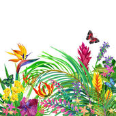 Tropical leaves, flowers and butterfly. — Stock Photo