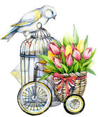 Tulip Flowers, canary bird and decorative birdcage. watercolor — Stockfoto