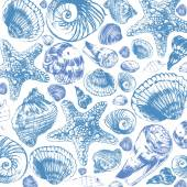 Sea shell handmade sketch. — Stock Photo