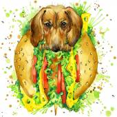 Funny dog and fast food, watercolor fashion print — Stock Photo