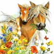 Horse and foal with meadow flowers. watercolor — Stock Photo #74488043